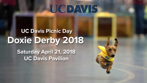 Thumbnail for entry 2018 Doxie Derby -  Picnic Day - April 21, 2018
