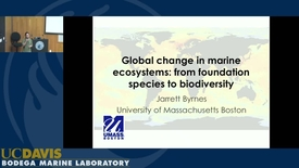 Thumbnail for entry BML - Jarrett Byrnes: Global change in marine ecosystems
