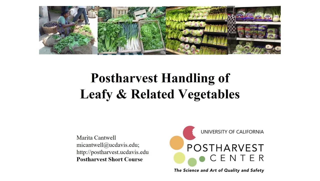 Leafy  Vegetables (Cantwell) - updated