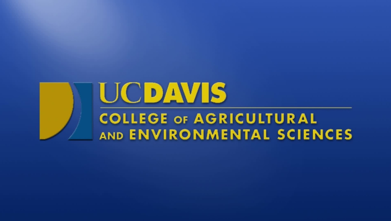2019 Ag & Environmental Sciences AM Commencement - June 16, 2019