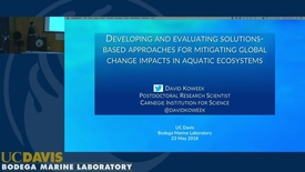 Thumbnail for entry BML - David Koweek: Developing and evaluating solutions-based approaches for mitigating global change impacts in aquatic ecosystems