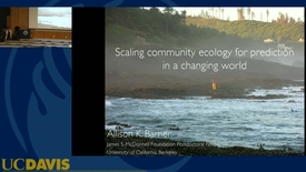 Thumbnail for entry BML - Allison Barner: Scaling community ecology for prediction in a changing world