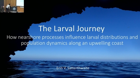 Thumbnail for entry BML - Erin Satterthwaite: The Larval Journey