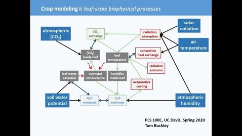 Thumbnail for entry PLS100C (crop modeling I)