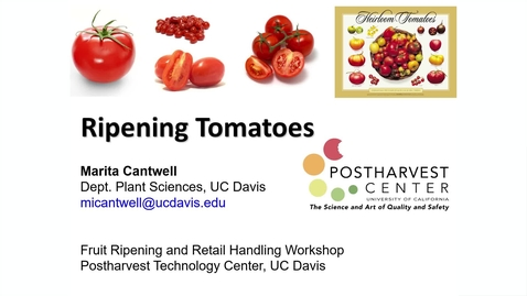 Thumbnail for entry Ripening Tomatoes - (Cantwell)