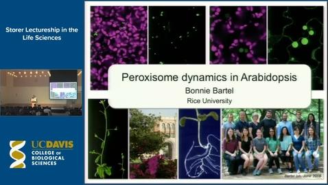 Thumbnail for entry Storer Lecture - Bonnie Bartel 4-19-17