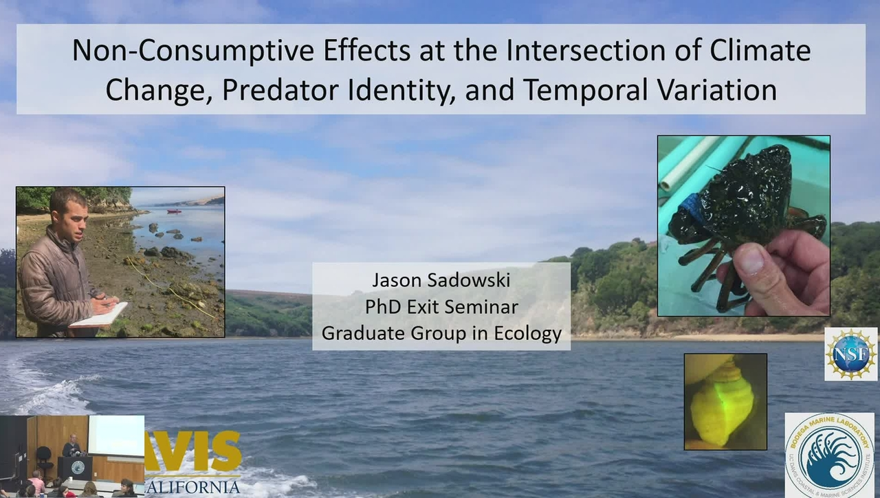 BML - Jason Sadowski: Non-Consumptive Effects at the Intersection of Climate Chance, Predator Identity, and Temporal Variation