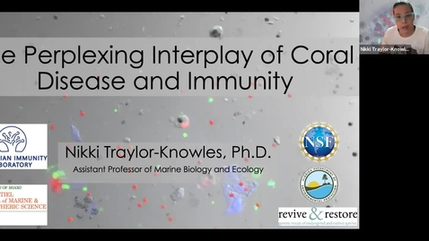 """Thumbnail for entry BML - Dr. Nikki Traylor-Knowles: """"Coral cells, genomics and disease"""""""
