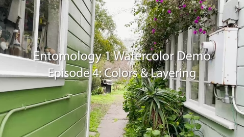 Thumbnail for entry Entomology 1 Watercolor Demo: Episode 4--Colors and Layering