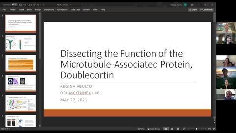 """Thumbnail for entry Regina Agulto: """"Dissecting the Function of the Microtubule-associated Protein, Doublecortin"""""""