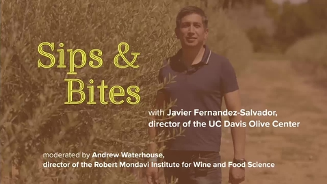 Thumbnail for entry Sips and Bites: Olive Oil Tasting with Center Director