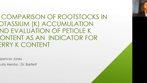 Thumbnail for entry VEN290 - A comparison of rootstocks potassium accumulation and evaluation of petiole potassium content as an indicator for berry potassium content