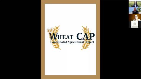 Thumbnail for entry WheatCAP Webinar Session Three - Necrotrophic Pathogens in Wheat