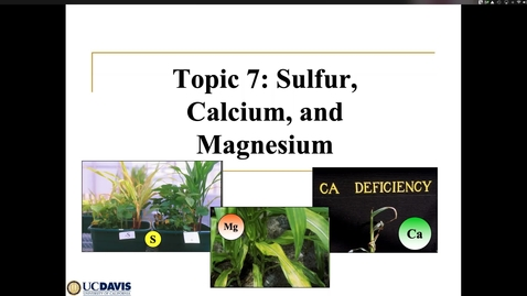 Thumbnail for entry Soil S, Ca and Mg Ch 7 May 7 Lecture