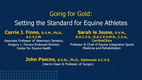 Thumbnail for entry Going for Gold: Setting the Standard for Equine Athletes