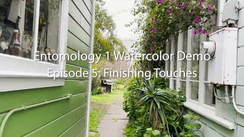 Thumbnail for entry Entomology 1 Watercolor Demo: Episode 5--Finishing Touches