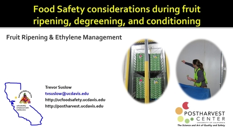 Thumbnail for entry Food Safety Considerations During Fruit Ripening, Degreening and Conditioning - (Suslow)