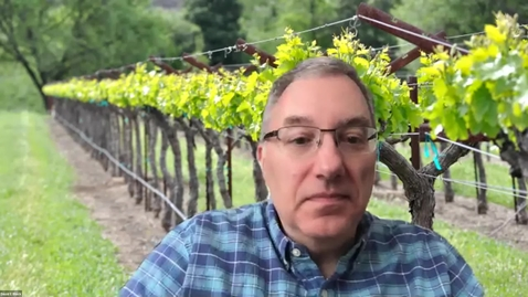 Thumbnail for entry Office Hours with Dave and Anita, Episode 11:  Pierce's Disease-Resistant Winegrape Varieties (August 25, 2020)