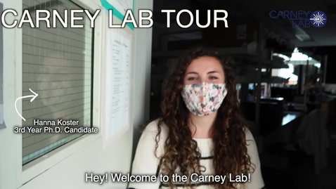 Thumbnail for entry Carney Lab Tour 2021