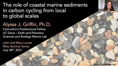 Thumbnail for entry BML - Dr. Alyssa Griffin:  The role of coastal marine sediments in carbon cycling from local to global scales
