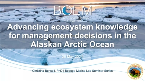 """Thumbnail for entry BML - Dr. Christina Bonsell: """"Advancing ecosystem knowledge for management decisions in the Alaskan Arctic Ocean"""""""