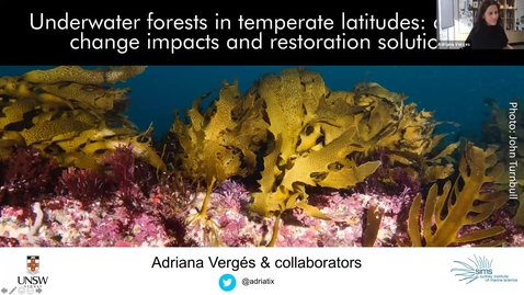 "Thumbnail for entry BML - Dr. Adriana Vergés: ""Underwater forests in temperate latitudes: climate change impacts and restoration solutions"""