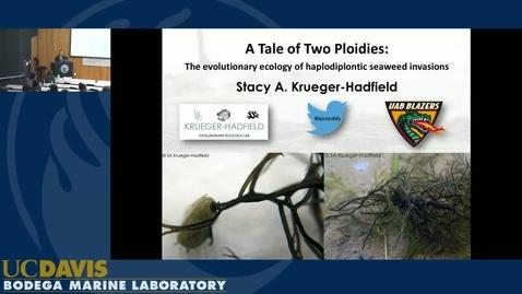 BML - Stacy Krueger-Hadfield: A tale of two ploidies