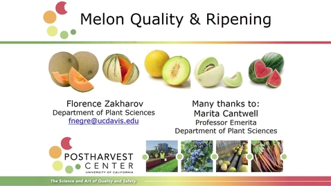 Thumbnail for entry Melon Quality and Ripening (Zakharov)