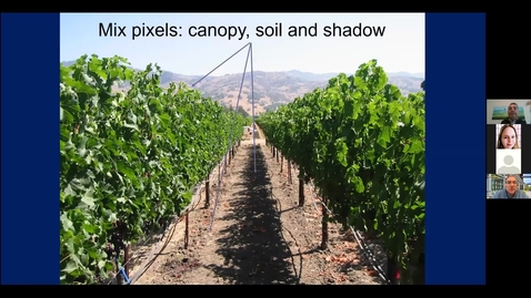 Thumbnail for entry Office Hours with Dave and Anita, Episode 13: New methods of assessing grapevine evapotranspiration demands and what it means to you