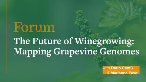 Thumbnail for entry Forum: The Future of Winegrowing: Mapping Grapevine Genomes