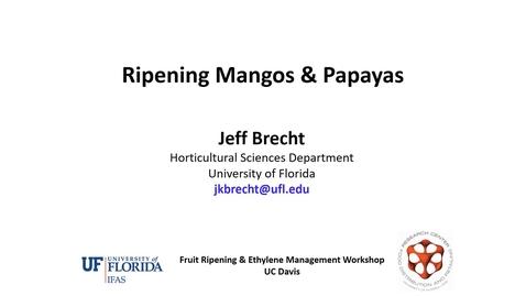Thumbnail for entry Ripening Mango and Papaya - (Brecht)