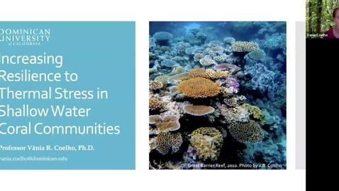 Thumbnail for entry BML - Dr. Vania Coelho: Increasing resilience to thermal stress in shallow water coral communities
