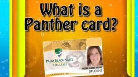 Thumbnail for entry What is A Panther Card?