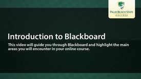 Thumbnail for entry Introduction to Blackboard