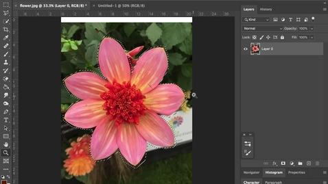 Thumbnail for entry photoshop 2- Copy +  Paste
