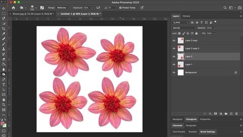 Thumbnail for entry photoshop 7- Dodge + Burn + Sponge