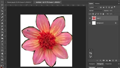 Thumbnail for entry photoshop 3- Editing + Resizing