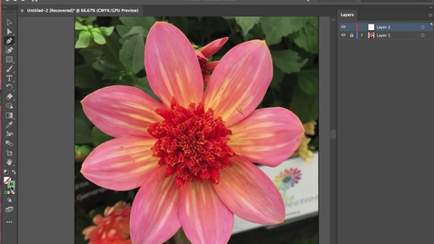 Thumbnail for entry illustrator 2- Pen Tool