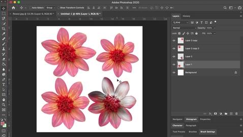 Thumbnail for entry photoshop 8- Eyedropper + Paint Bucket