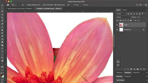 Thumbnail for entry photoshop 4- Erasing