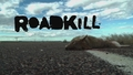 BONUS: Roadkill Q&A Plus Project Update with Freiburger and Finnegan!
