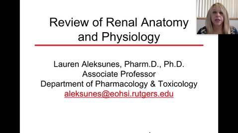 Thumbnail for entry Renal Anatomy & Function Review