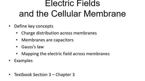 Thumbnail for entry Lesson 13 Goldman2
