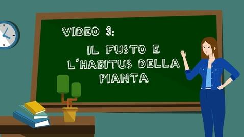 Thumbnail for entry 3 - Il fusto e l'habitus della pianta