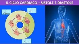 Thumbnail for entry Sistema circolatorio - il ciclo cardiaco sistole e diastole
