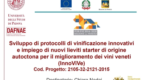 Thumbnail for entry Presentazione_InnoViVe_30sec