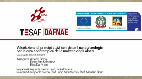 Thumbnail for entry Veicolazione di principi attivi con sistemi nanotecnologici per la cura endoterapica delle malattie degli alberi - 3 minuti FSE