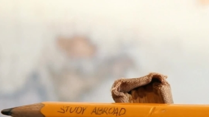 Thumbnail for channel Studying Abroad