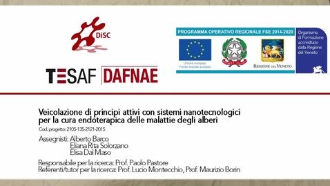 Thumbnail for entry Veicolazione di principi attivi con sistemi nanotecnologici per la cura endoterapica delle malattie degli alberi - 30 secondi FSE