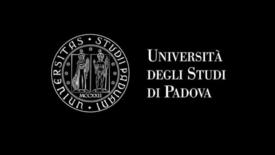 Thumbnail for entry AMICI UNIVERSITA